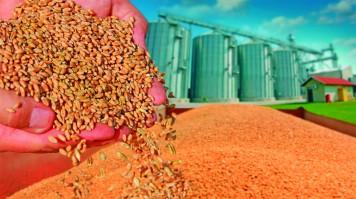 imagen de Dirección de Explotaciones Agrarias y Ganaderas Aragón, Navarra y Soria