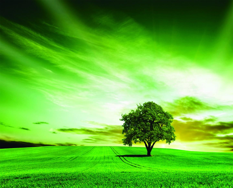 Ordenación del territorio y Medio Ambiente
