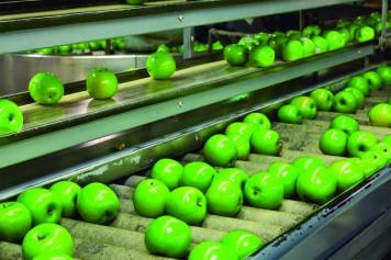 imagen de Industrias agrarias y alimentarias